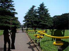 inpark.jpg